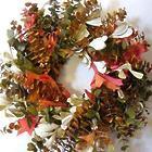 Oak Reflection Preserved Wreath