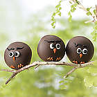 12 Owl Truffles Gift Box