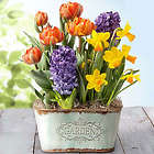 3-Month Floral Bouquet and Bulb Garden Gift Club