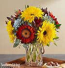 Sunflower Succulent Garden Bouquet in Lantern Vase