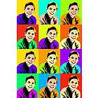 Custom Photo 12 Panel Pop Art Print