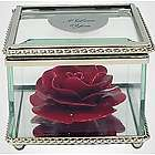 Heirloom Rose Flower in Glass Museum Case