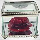 Heirloom Rose Flower in Glass Museum Case