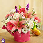 Stunning Symphony Bouquet in Pink Watering Can