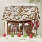 Gingerbread House with Chris Mouse