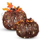 2 Pre-Lit Grapevine Pumpkin Fall Decorations