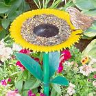 Sunflower Birdfeeder with ID Cards