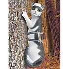 Fancy Feline Tree Climber