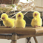 3 Fuzzy Ducklings Decor