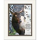 Family or Friend Poem Personalized Elk Print
