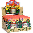 Chocolate Dipped Insects 24-Pack Set
