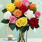 One Dozen Long Stemmed Vibrant Birthday Roses
