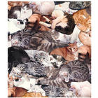 Cat Lovers Fleece Throw