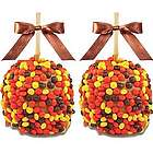 Gourmet Candy Dipped Caramel Apples