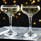 2 Gatsby Champagne Coupe Glasses