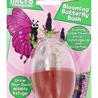 Blooming Butterfly Bush Micro Terrarium