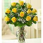 Elegance Long Stem Yellow Roses