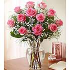 Dozen Rose Elegance Long Stem Pink Roses