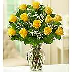 Dozen Rose Elegance Long Stem Yellow Roses
