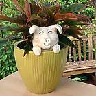 Ceramic Pig Potted Plant Buddy