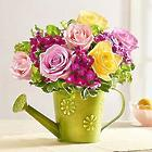 Garden Roses in Watering Can Planter
