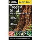 Pocket Guide to Trees and Shrubs of North America