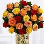 Two Dozen Long Stemmed Autumn Roses