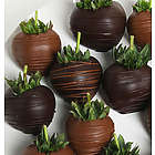 Milk and Dark Chocolate Covered Strawberries