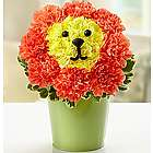 Blooming Lion Pail