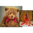 Bear My Secrets Valentine Teddy Bear