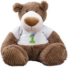 Birthday Teddy Bear in Personalized Name and Age T-Shirt