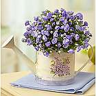 Spring's Blooming Rose Campanula Watering Can