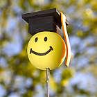 Graduation Antenna Ball