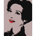 Audrey Hepburn Pop Art Limited Edition Fine Art Print