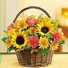Fields of Europe for Fall Flower Basket