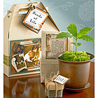 Seeds Of Life� Tree Kit