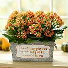 Plant Happiness, Grow Laughter, Harvest Love Planter