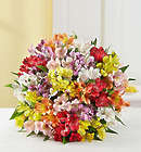 100 Bloom Peruvian Lily Bouquet