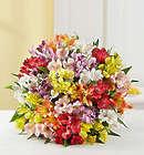 100 Bloom Peruvian Lily Bouquet