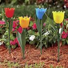 Solar Tulip Garden Stakes