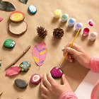 Rock & Leaf Painting Craft Kit