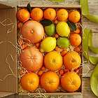 Simply Fresh Winter Citrus Fruit Gift Box