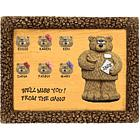 Personalized Pharmacist Bears on Plaque