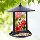 Solar Hydrangea Birdfeeder
