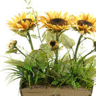 Artificial Sunflowers in Fleur De Lis Planter