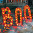 BOO Lighted Outdoor Halloween Decoration