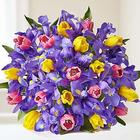 Deluxe Fanciful Spring Tulip and Iris Bouquet