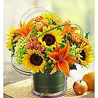 Sunburst Bouquet of Flowers