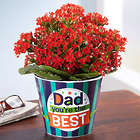 Bright Red Kalanchoe Plant in Dad, You're the Best Container
