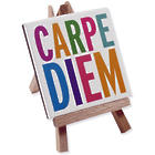 Carpe Diem Mini Gallery Masterpiece Art Print